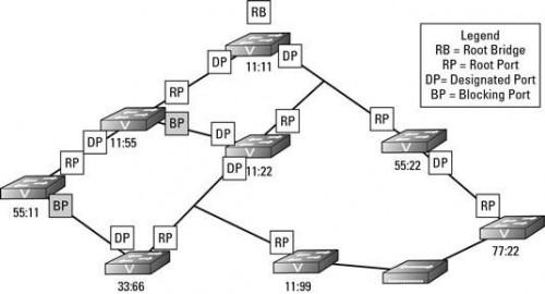Come Spanning Tree Protocol (STP) Gestisce Network Changes